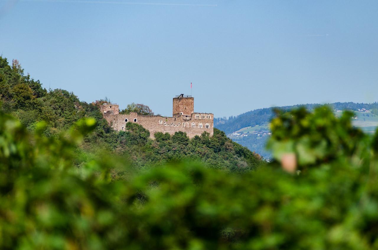 Blick auf die Burgruine Boymont