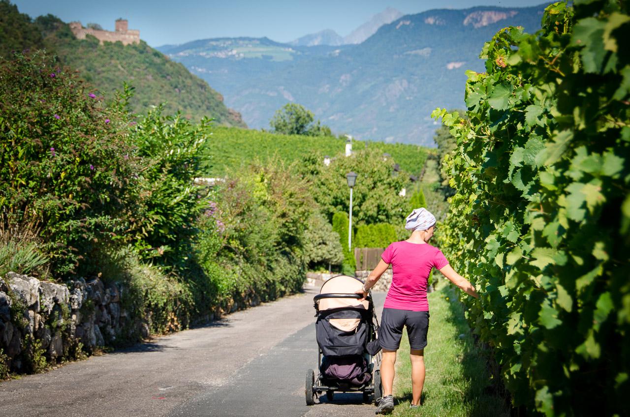 Spaziergang Eppan Berg