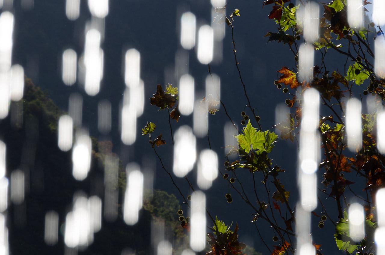 Herbst, Wassertropfen