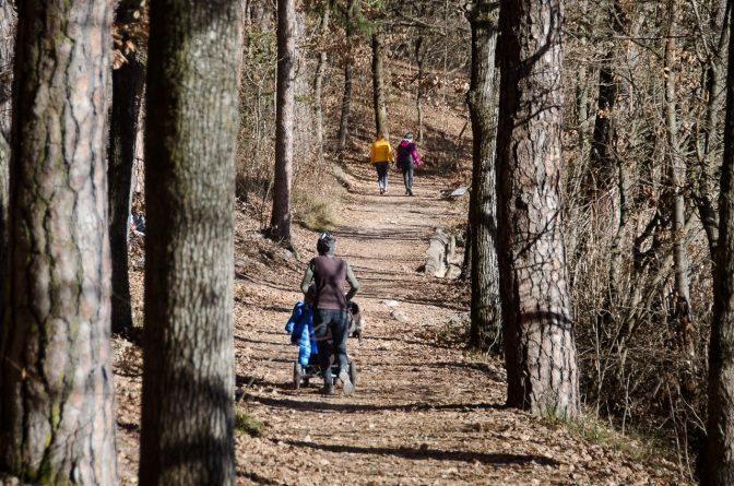Spazieren im Montiggler Wald rund um den Kleinen Montiggler See