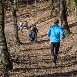 Jogging im Montiggler Wald