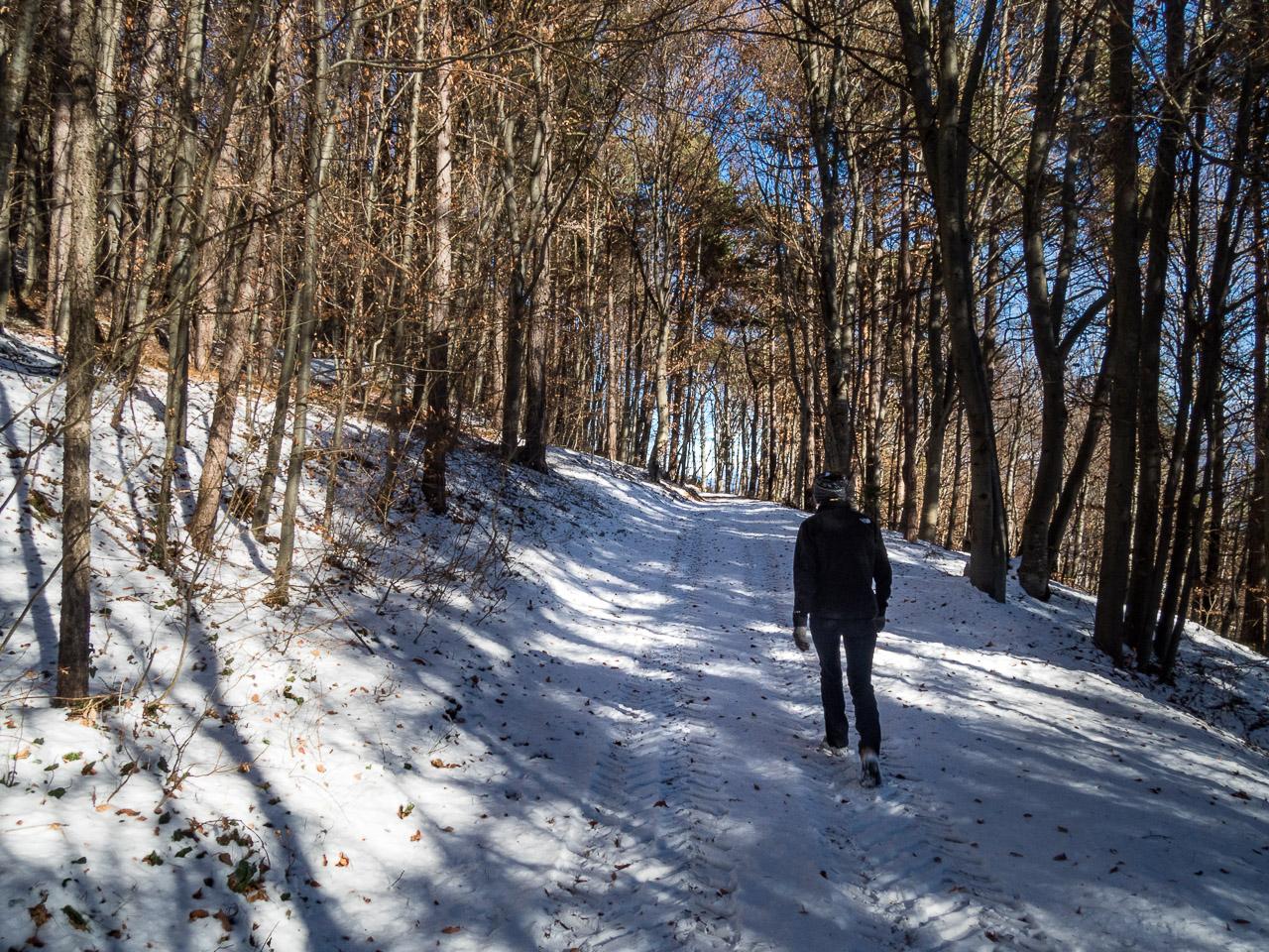 Schneewandern - Graun im Winter