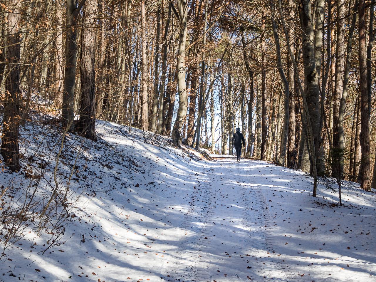 Schneewandern in Graun/Kurtatsch im Winter