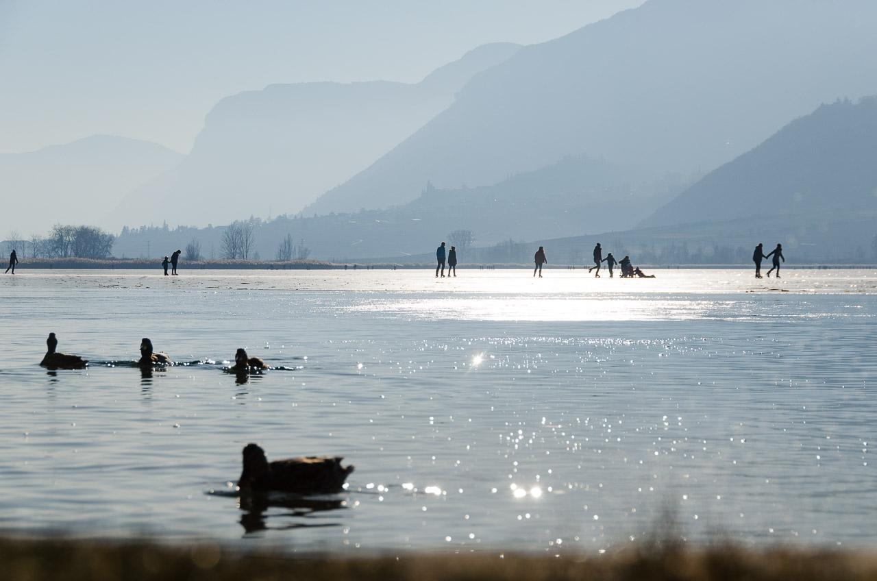 teilweise gefrorener Kalterer See mit Blick nach Tramin