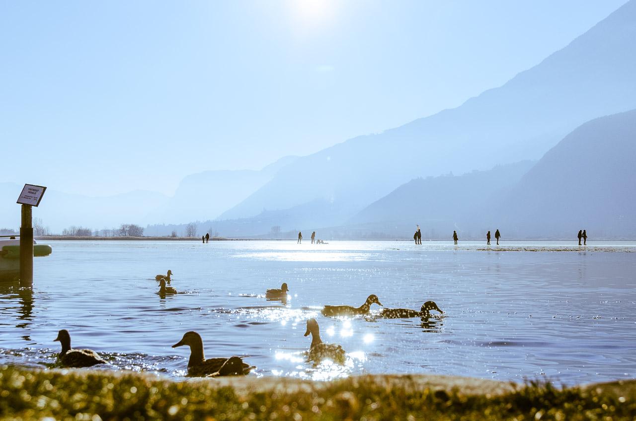 gefrorener Kalterer See