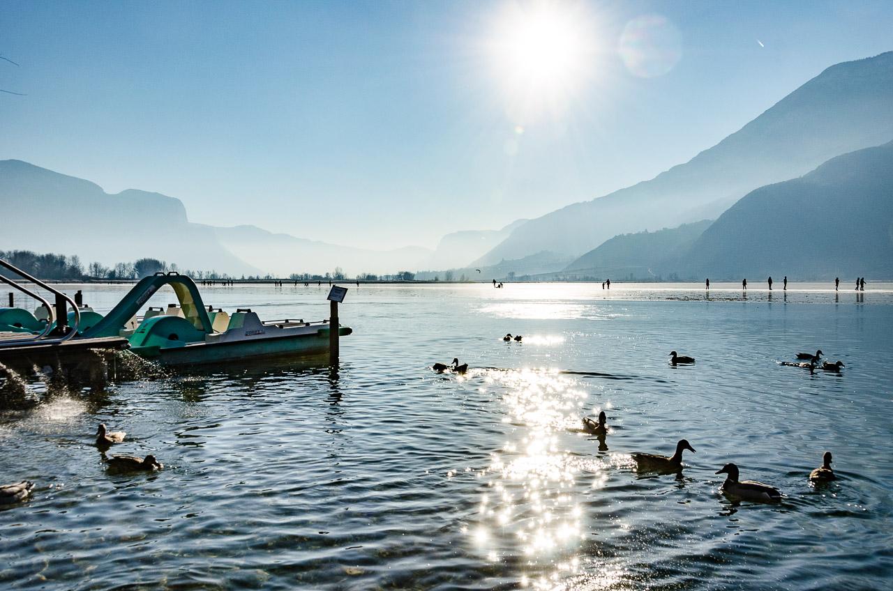 Enten auf dem teilweise gefrorener Kalterer See