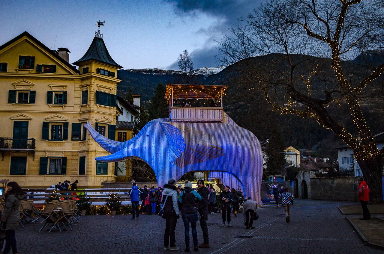 Soliman in Brixen