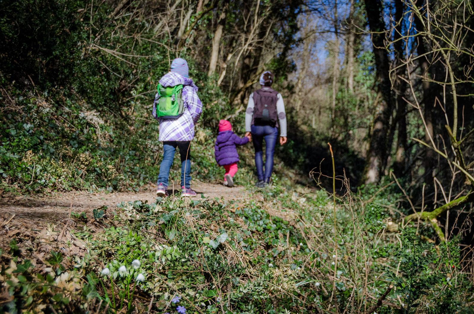 Spaziergang durch das Frühlingstal