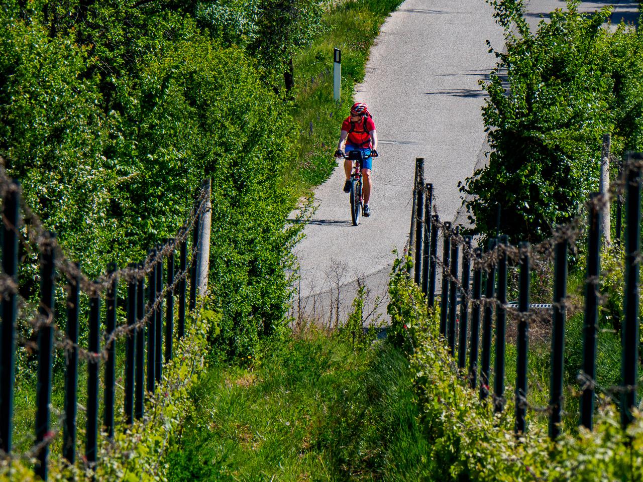 Radfahrer auf der Söller Straße