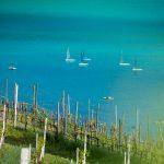 Segelboote auf dem Kalterer See