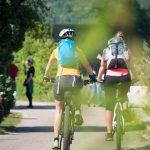 Rad fahren am Weinwandertag