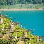 Blick vom Barleiter Weg zum Kalterer See