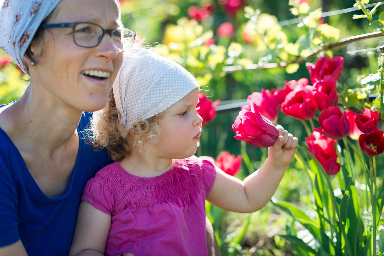 Anni, Anna und die Tulpen