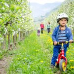 Radfahren in der Blüte