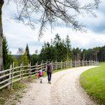 spazieren auf dem Mühlenrundweg in Aldein