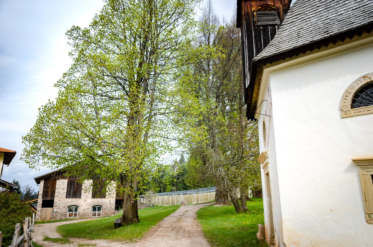 Bauernhof Thalhof mit Bauernkapelle Maria Schnee in Aldein