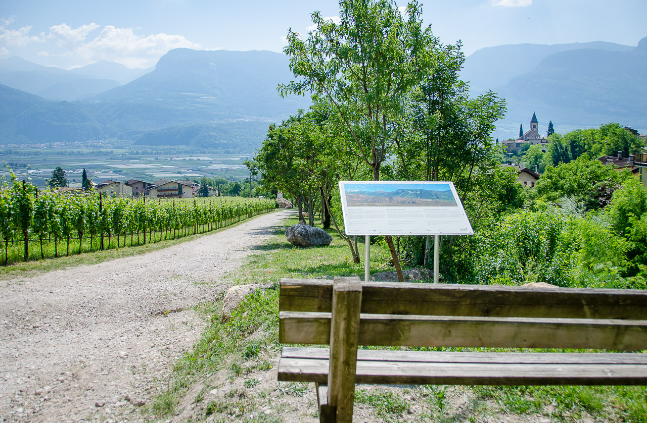 Geoweg - Gewürztraminer Weinwandertag Tramin