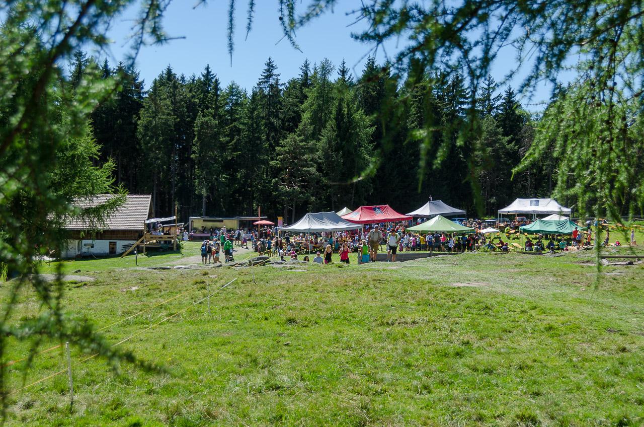 Haflinger Almfest