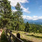 Wandern Alm Afing Blick Rosengarten