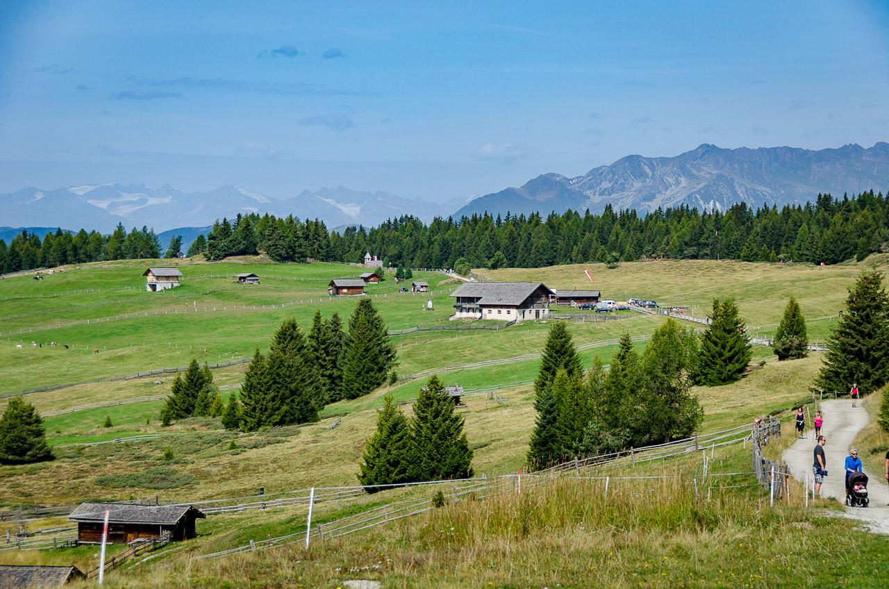 Blick von der Rodenecker Alm zu den Stubaier Alpen