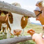 Anna und Anni mit Kuh