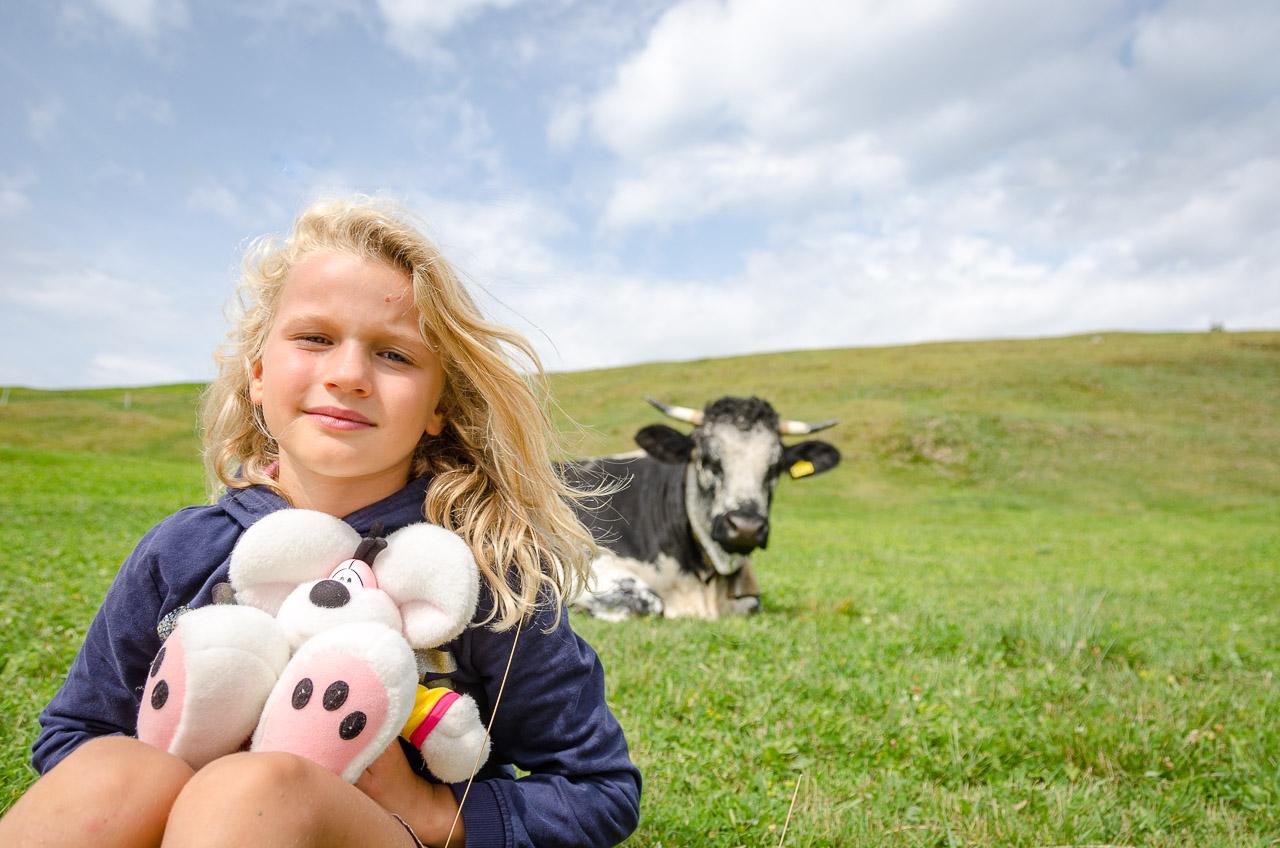 Alm mit Kühe