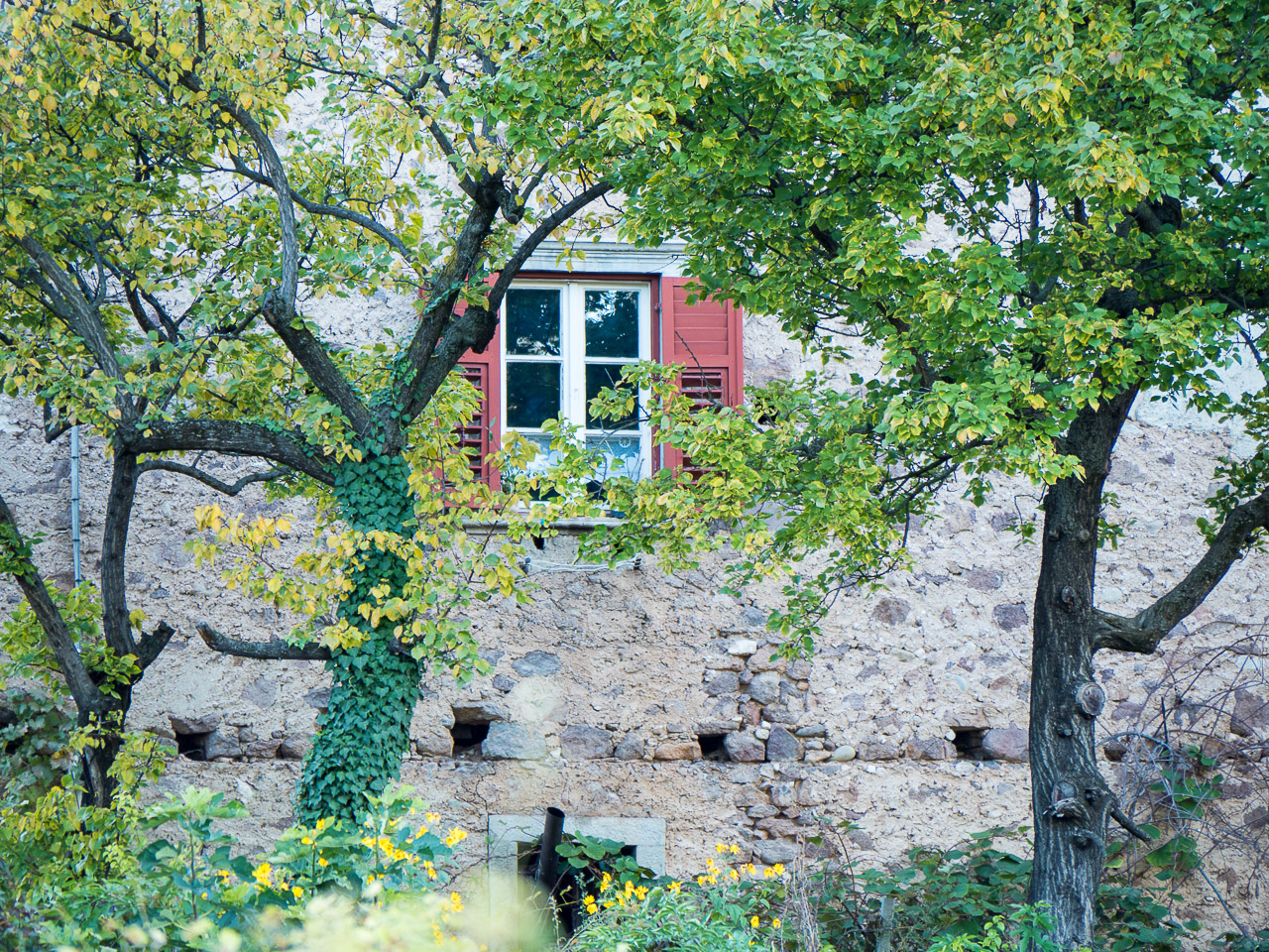 Fenster Bauernhaus