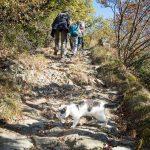 Herbstwanderung von Vilpian zum Buschenschank Oberschol Hof
