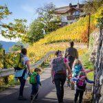 Wandern von Vilpian zum Buschenschank Oberschol Hof