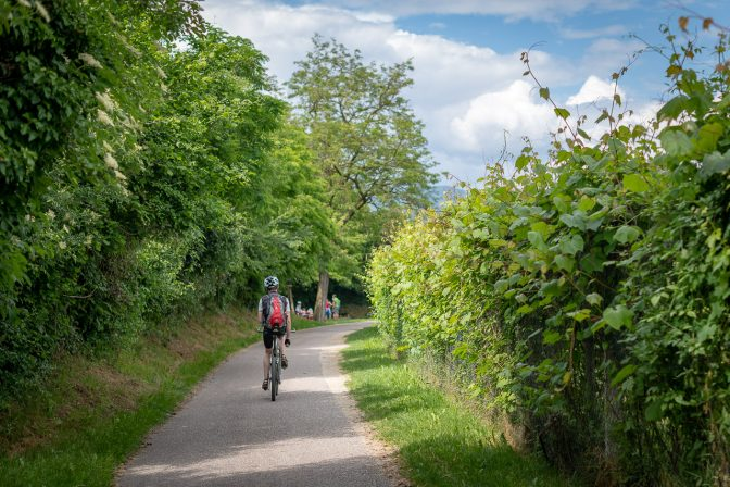 Radweg und Promenade zwischen Kaltern und Eppan