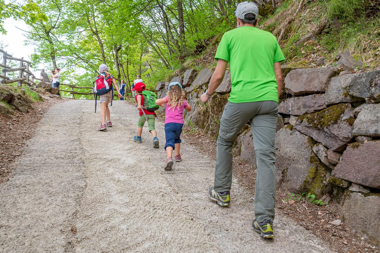 Steiler Anstieg zur Wehrburg Hocheppan hinaufDrei Burgen Wanderung in Eppan