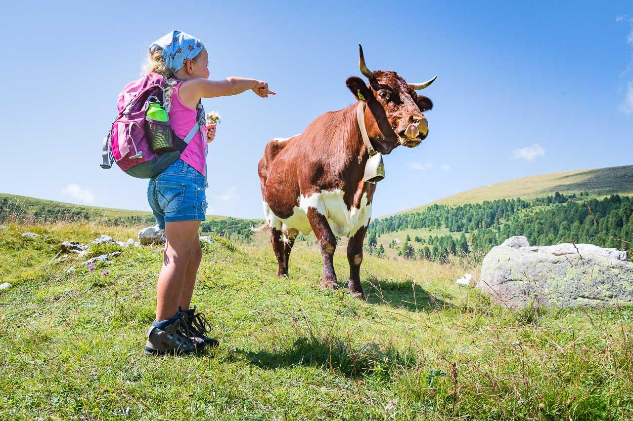 So eine Kuh die hat es fein. Die braucht kein Taschentuch, die hat eine lange Zunge. Das geht auch :-)