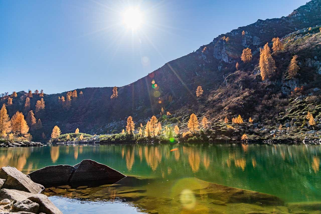 Herbstliche Lärchen rund um dem See Lago di Vacarsa