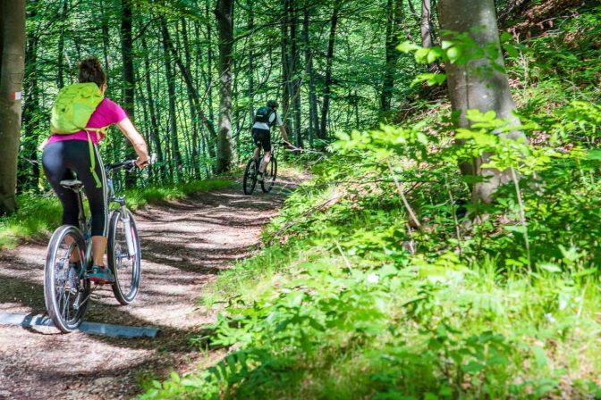 Mountainbiker auf dem Forstweg Strada Mont del Gidio