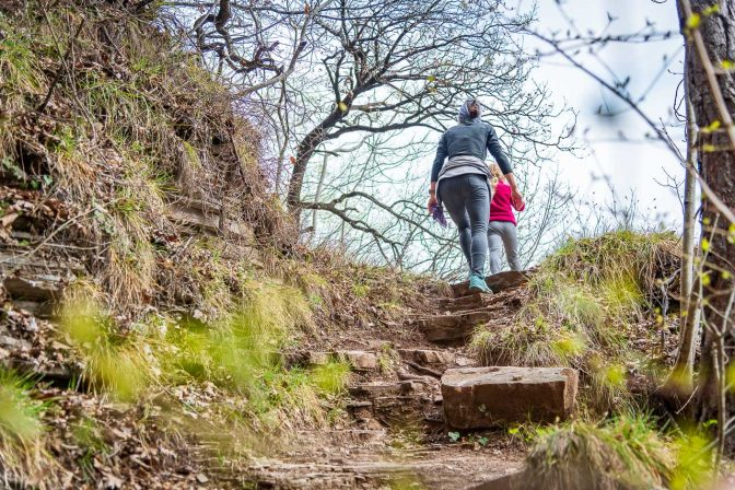 6er Steig, steil, teilweise mit Felsstufen, aber botanisch abwechslungsreich. Eine Artenvielfalt die man in Südtirol nicht oft findet.